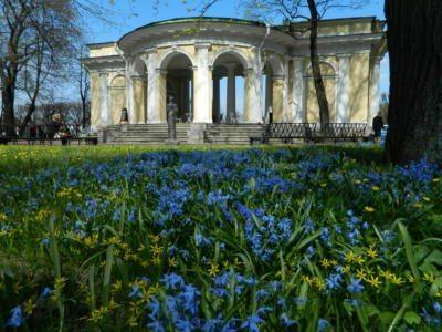 Михайловский сад Весеннее цветение - Mikhailovsky Garden