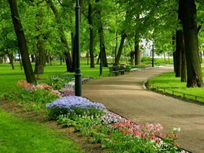 Михайловский сад Весенний цветник- Mikhailovsky Garden