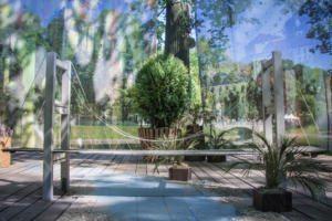 Императорские сады - Путь в тысячу ли
