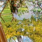 Императорские сады - Чиженок