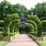Императорские сады - арки - Imperial gardens festival
