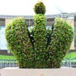 Императорские сады - Корона