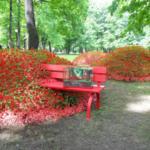 Императорские сады - красная скамейка