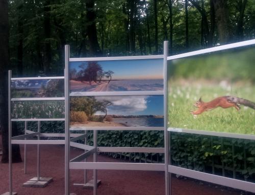 Фотовыставка в Летнем саду
