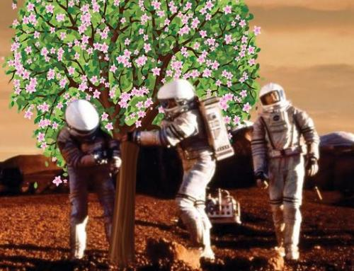 Plants in space. Will the apple-trees blossom on Mars?