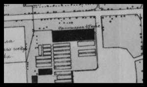 Оранжерейно-тепличное хозяйство Русского музея в Михайловском саду. Фрагмент плана 1919 г.
