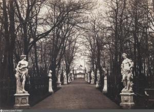 Центральная аллея Летнего сада, вдали виднеются центральные ворота Невской ограды. Фото 1863-65 гг