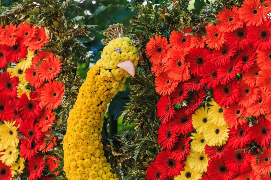 """Цветочная композиция """"Жар-птица"""" у кофейного домика. От Управления по садоводству и огородничеству."""