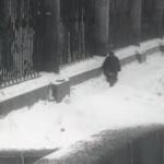 2. Кадр из фильма Шинель 1926 г. У Невской ограды Летнего сада.