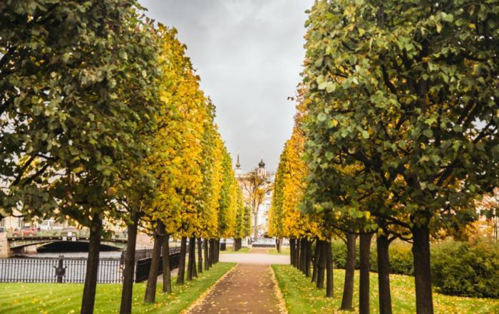 Михайловский сад. Осень 2018