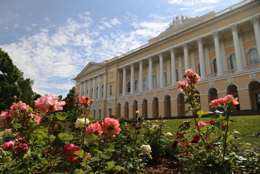 Михайловский дворец, розарий 2018