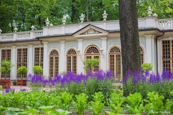 e91cc521ca236 Главная | Императорские Сады Русского Музея