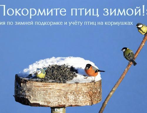 (Русский) 13-15 ДЕКАБРЯ СОСТОИТСЯ ОБЩЕГОРОДСКОЙ УЧЁТ ПТИЦ НА КОРМУШКАХ